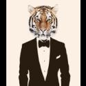 Tiger31